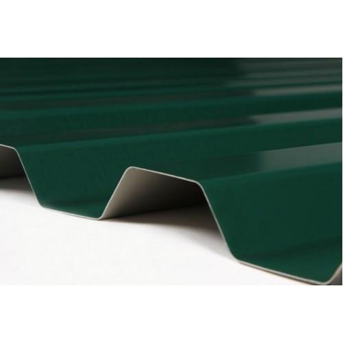 Профнастил зеленый C21 окрашенный RAL 6005